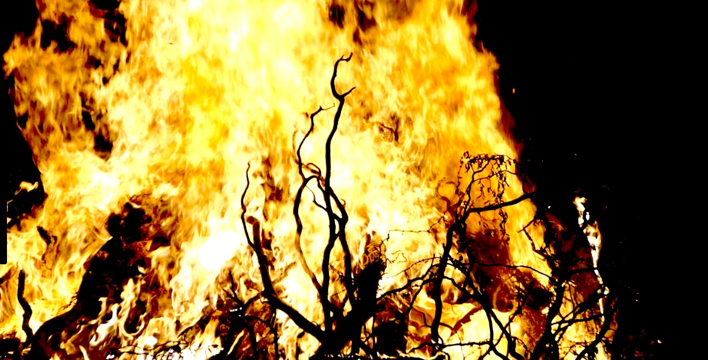 Feuer Bild